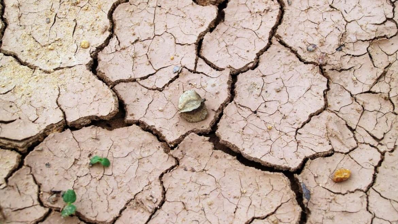Грижи за сухата кожа (част 2)