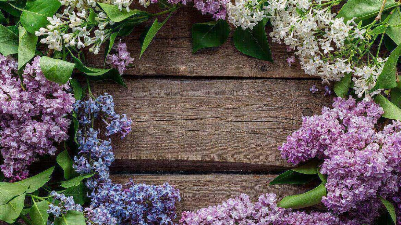 Обновете кожата си през пролетта
