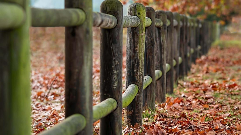 Ролята на кожната бариера в предпазването на организма