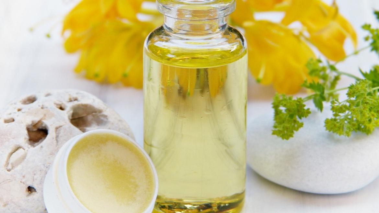 Фантастичните свойства на маслото от жожоба